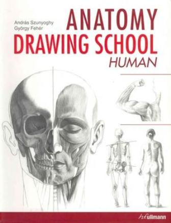 Anatomy Drawing School Human Body
